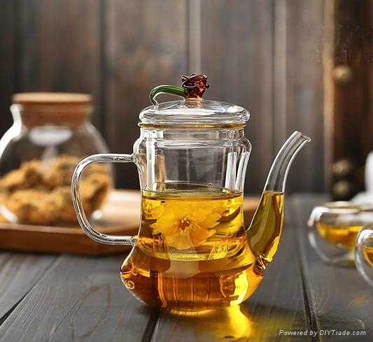 500ml Classic Glass Teapot With Coil Filter - Borosilicate Glass 2
