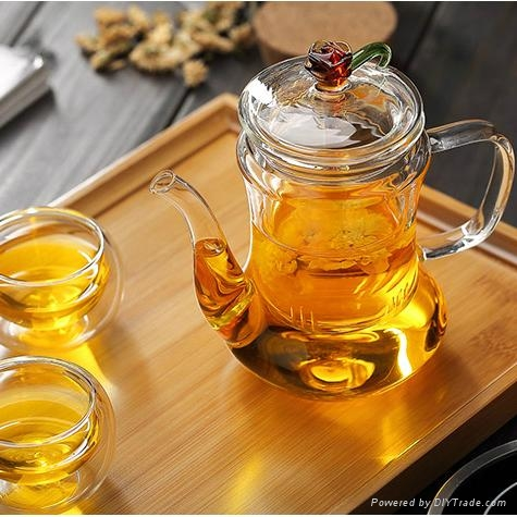 500ml Classic Glass Teapot With Coil Filter - Borosilicate Glass 4