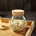 Hot Selling Christmas Gift Wholesale glass canisters 1