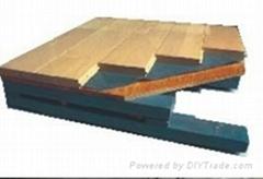 SS結構雙層龍骨防潮體育木地板