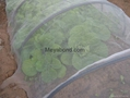 100% virgin HDPE anti insect netting 3