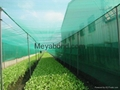 100% virgin HDPE anti insect netting 4