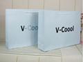 Promotion paper bag