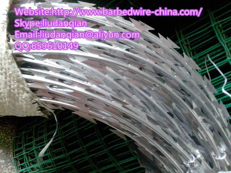 Spiral Razor Barbed Wire 5