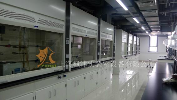 实验室全钢通风柜 2