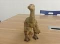 Dinosaurs  wild animal