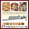 Soybean Protein Making Machine