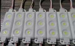 LED3灯5050注塑模组
