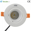 Phlips CREE Chip LED Ceiling Lighting Manufacturer LED Lamp 1