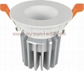 Phlips CREE Chip LED Ceiling Lighting Manufacturer LED Lamp 3