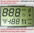 圖形點陣LCD LCM FST