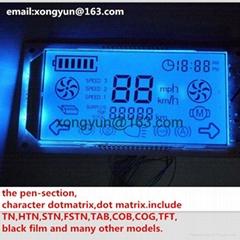 段碼液晶模組帶藍色背光