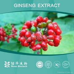 2014 The Most Favorable Price Ginseng Extract Ginsenoside 80%