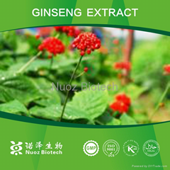 2014 New Products Panax Ginseng Extract
