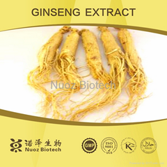 Low price Ginseng Extract Powder