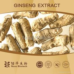 American Ginseng P.E. Fine Powder