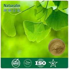 Ginkgo biloba leaf extract