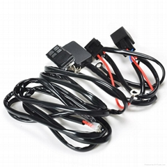 Truck 2 Legs Plug and Play Remote Control Wiring Harness and Switch