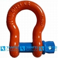 Us Type Screw Pin Anchor Shackle of G209 Shackle
