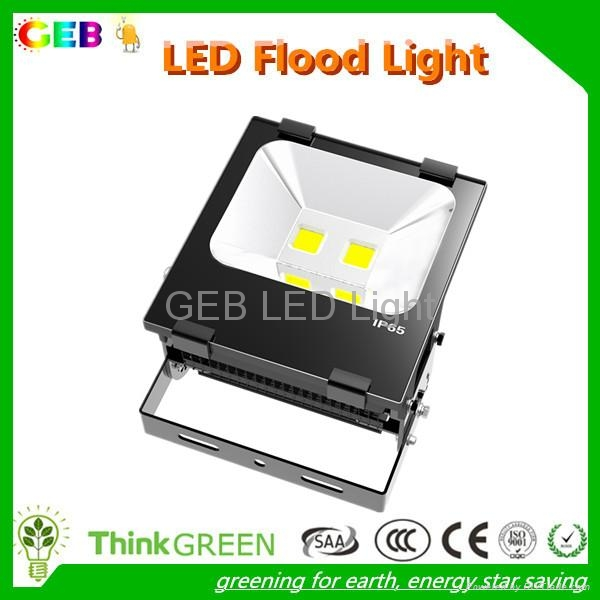CE RoHS 100W LED Flood Light IP65 120lm/W Outdoor Wall Lamp 1