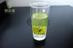 保康綠菊茶藝朮茶