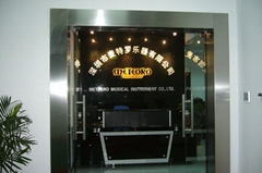 Shenzhen Meteoro Musical Instrument Co., Ltd.