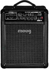 35W Guitar Amplifier Super Acoord 350USB