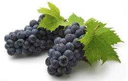 Grape Seed Extract Water-Soluble Proanthocyanidin Polyphenol 1