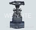 forged steel globe valve 2