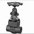 forged steel globe valve 1