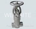 forged steel globe valve 4