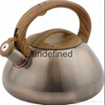 Home Whistling Water Boiler In Stainless Steel Water tea pot 4