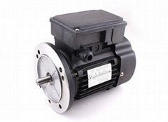 YL series single-phase double value capacitance asynchronous motor