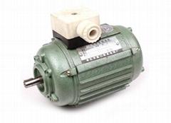 YSH series  three-phase motor