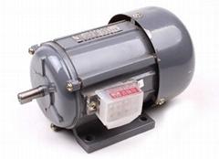 YSW series  three-phase motor