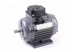 YS series  three-phase motor