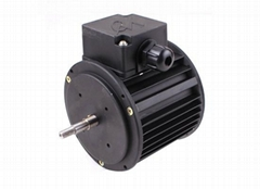 three-phase fan motor