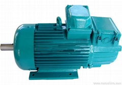 Three Phase Industrial Electric Motor