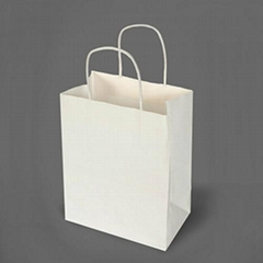 White Kraft Paper Gift Bag with Rope Handles