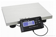 300KG Electronic platform scale PS-02