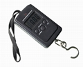 40kg Cheapest Digital Hanging Scale from Hostweigh Factory, w/ Blue Backlight, M 3
