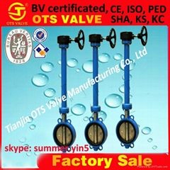 EPDM Ductile iron  butterfly valve
