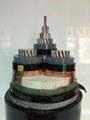 鋁高壓電力電纜YJ  22