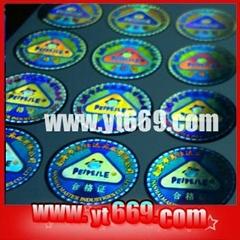 Manifold hologram sticker