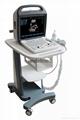 Color Doppler System(ultrasound
