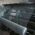 heavy hexagonal wire netting 2