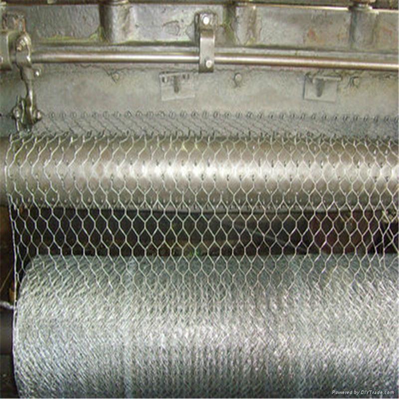 heavy hexagonal wire netting 5