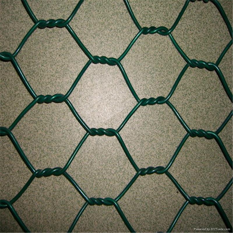 heavy hexagonal wire netting 4