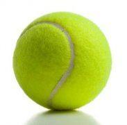 tennis ball companies