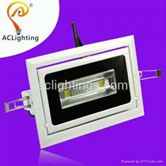 30w angel adjust rotated LED Downlight